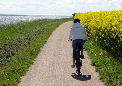 Fahrrad fahren auf Fehmarn