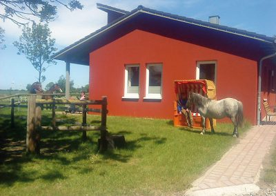 Ferienhaus auf dem Ferienhof Lüders-Köneke auf Fehmarn